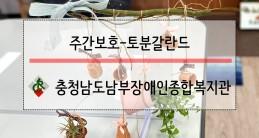 [주간보호팀] 원예활동-토분갈…